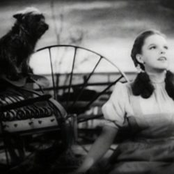 "Judy Garland singing Over the Rainbow in ""The Wizard of Oz"""