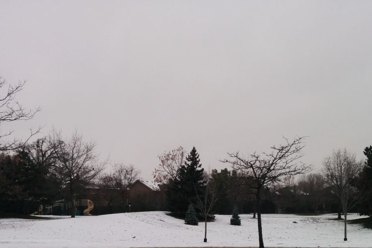 Snowy Landscape by Priyanka Mehta.